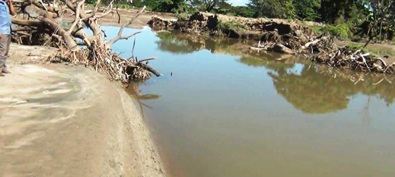 20 mil tareas de arroz afectadas río Masacre