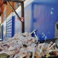 Explican por qué el precio de la libra de pollo está más caro
