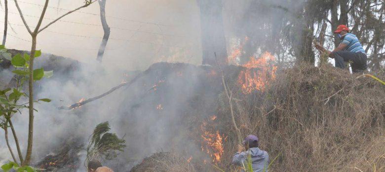 Revelan fuegos forestales son provocados en La Vega