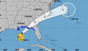 MIAMI.-El Centro Nacional de Huracanes de Miami, reportó este viernes que una perturbación se convirtió hoy en la tormenta tropical Nestor con vientos máximos de 95 kilómetros por hora.  El centro de la tormenta tropical Nestor fue ubicada cerca de la latitud 26.3 norte, longitud 89.5 oeste.  Néstor está moviéndose hacia el noreste cerca de 22 mph (35 km / h), y se espera que continúe hasta el domingo, seguida de un giro hacia el este-noreste a primera hora del lunes.  Pronostican que, el centro de Néstor se acercará más tarde a la costa norte del Golfo hoy y esta noche, para luego moverse tierra adentro a través de porciones de sureste de los Estados Unidos el sábado y el domingo, ya que se convierte en un ciclón post-tropical.  Se espera que Nestor se mueva en alta mar costa de Carolina del Norte hacia el Atlántico occidental a última hora del domingo.  Los vientos máximos sostenidos son cerca de 60 mph (95 km / h) con mayor ráfagas Se espera cierto fortalecimiento más tarde hoy, con debilitamiento pronóstico después de que Nestor se mude tierra adentro.  Se espera que Nestor pierda características tropicales y se convierten en post-tropical el sábado.  Los vientos con fuerza de tormenta tropical se extienden hacia afuera hasta 175 millas (280 km), principalmente al noreste y este del centro.