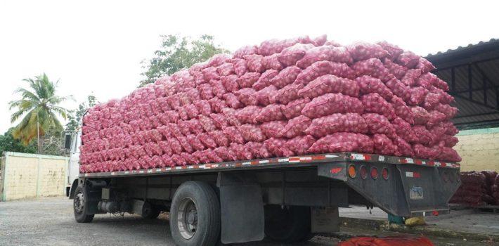 Inespre vende más de 6 mil quintales de cebolla a 10 pesos la libra